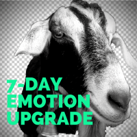 7-DAY EMOTIONAL UPGRADE - (1)