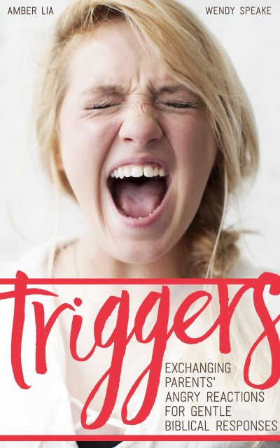 Triggers Book cover by Amber Lia and Wnedy Speake