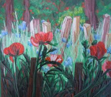 Poppies - Katiepm