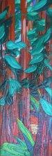 Redwoods IV - Katiepm