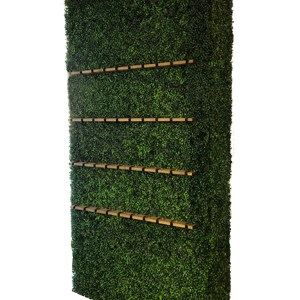 Champagne Boxwood Wall
