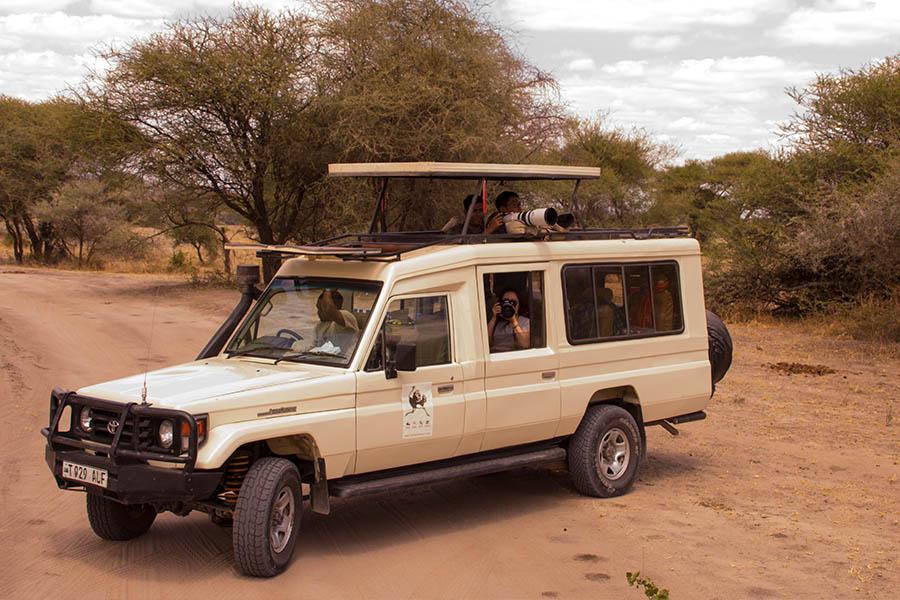 Photo Safari s