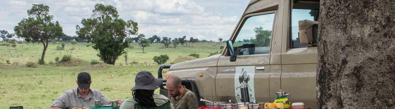 lunch in serengeti
