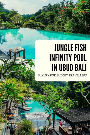 How to spend a day in luxury at the beautiful Jungle Fish infinity pool near Ubud in Bali... and all for a bargain price!