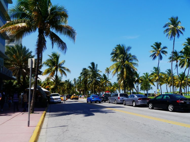 Image of a main road lined with palm trees on Ocean Drive in Miami