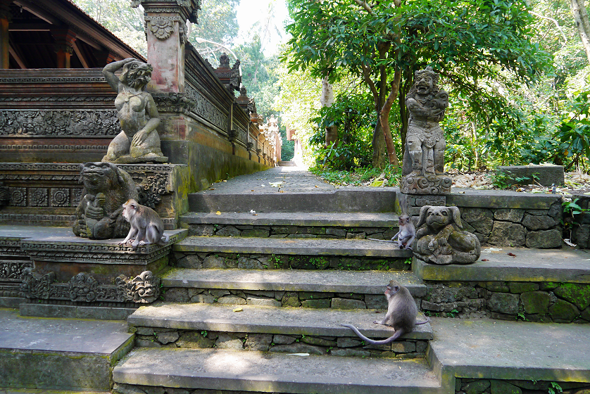 Surviving the Ubud Monkey Forest in Bali | Kat is Travelling