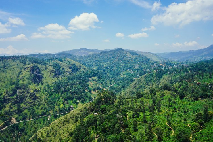 Image of lush green vegetation and rolling hills from the top of Little Adam's Peak in Sri Lanka