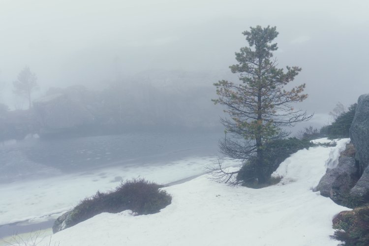 Image of snow and a frozen lake at the top of the hike to Pulpit Rock in Norway