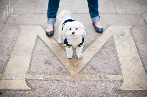 Kat-Ku_UMichigan-Pets_Roni_10