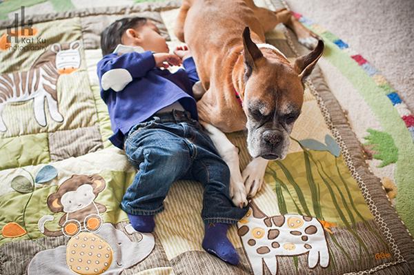 Sarah-the-Boxer_Modern-Pet-Photography_04