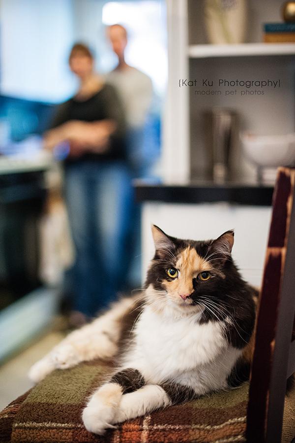 Kat Ku Photography - Snixle, Smudge, and Hannah Piper-26