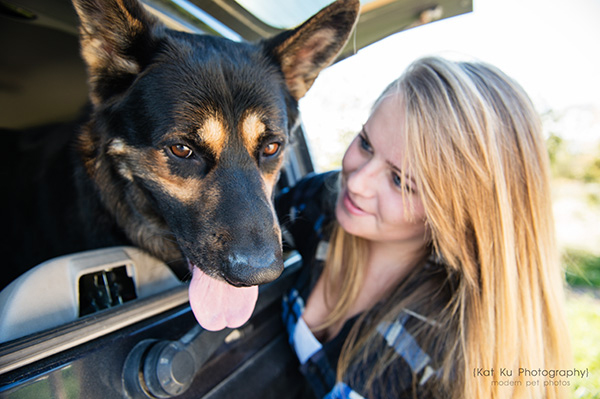 Kat Ku Photography_Bentley_German Shepherd_13
