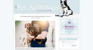 Kat Ku Inspirational Pet Photographers - The Pet Anthology