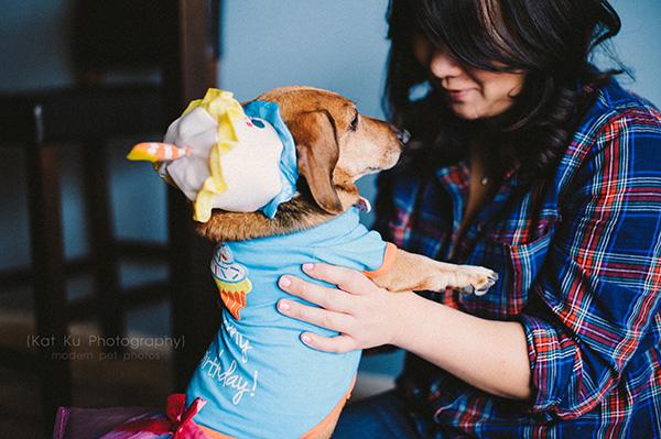 Kat Ku_Noodle_Pet Photography_06