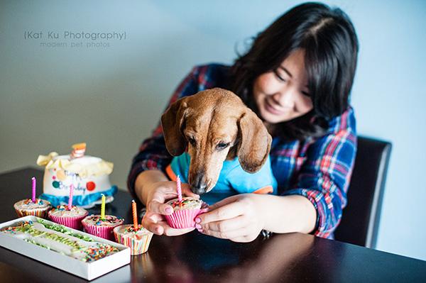 Kat Ku_Noodle_Pet Photography_08