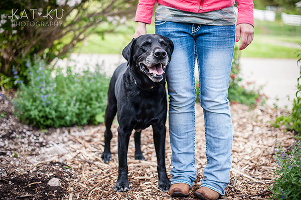 Kat Ku_Tank the Black Lab_Novi Dog Photographer_07