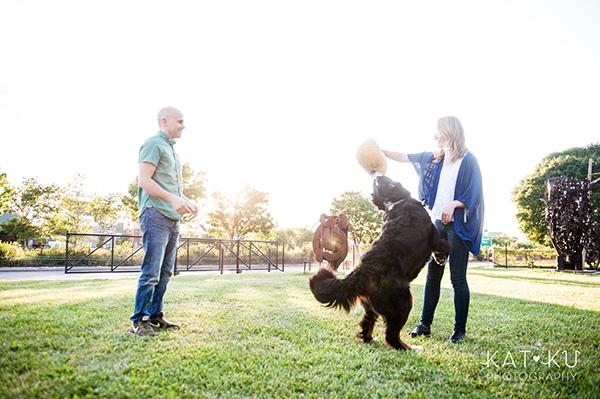 Kat Ku_Bernese Mountain Dog_Detroit Pet Photography_16