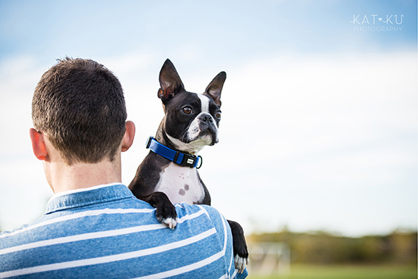 All Rights Reserved_Kat Ku_Franklin Boston Terrier_14