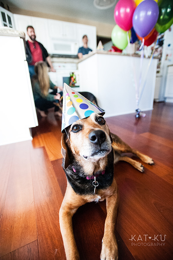 All Rights Reserved_Kat Ku_Puppy Party Birthday Bash_17