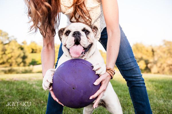 kat-ku-gemma-english-bulldog-pet-photography_16