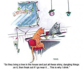 cats in bar discussing Christmas trees