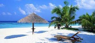 Ssese Island