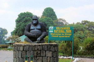 Tourist Activities in Volcanoes National Park