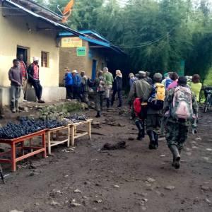 Rwanda Safari Packages and Rwanda Tour Packages
