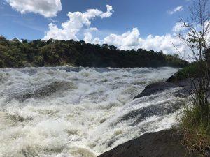 Safaris Uganda