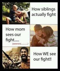 Sibling fights