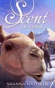 Scent of Cedar