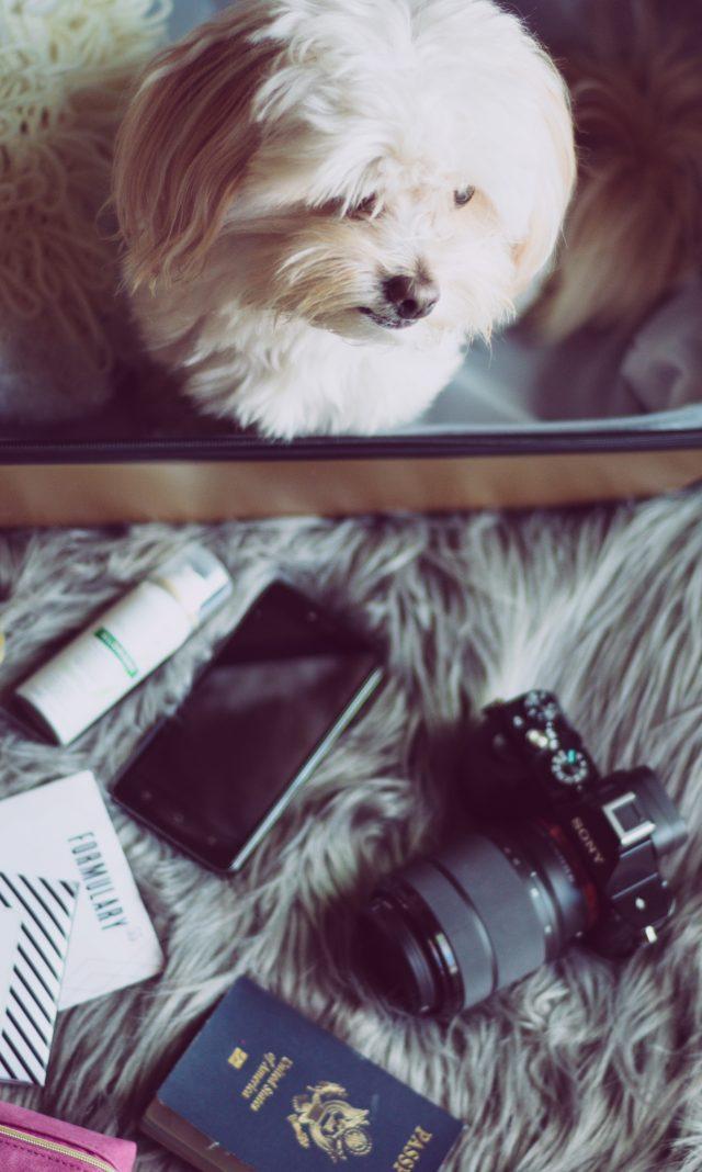 Travel Blogger, Travel With Me, Anthropologie, Style Blogger, Stylist, KatWalkSF, NYFW, Raden, Fashion Week, WIW, OOTD
