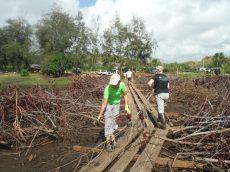 Malama Huleia Work Day