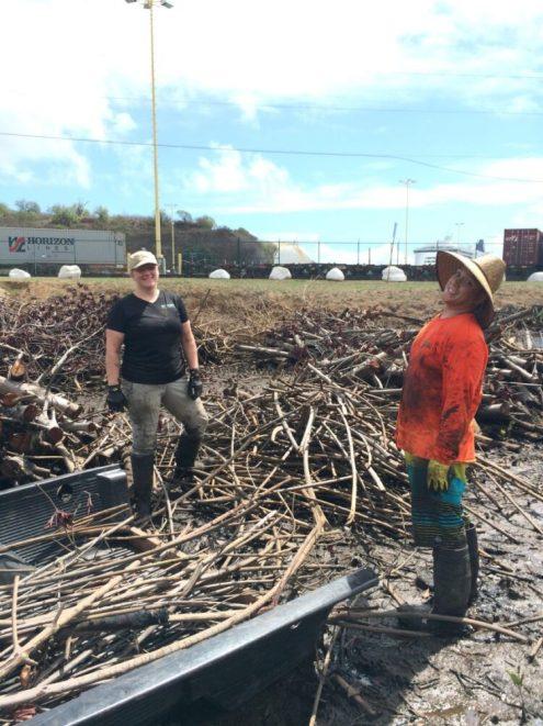Kelsey & Nathan, Malama Huleia Work Day