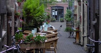 üzleti lehetőség kávézó tuajdonosoknak