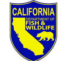 IMPORTANT TO COMMENT – CDFW Inland Trout Regulation Changes
