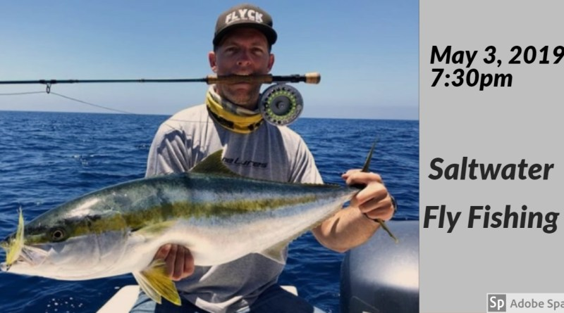 Searching for Calico Bass and Yellowtail on the fly within the SoCal bight