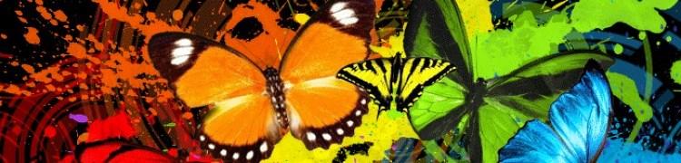 cropped-butterfly_slash.jpg