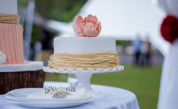 Cake – 4