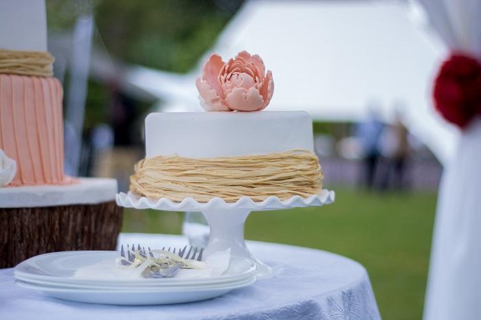 Cake, KekyTamu, KawiWedsDion