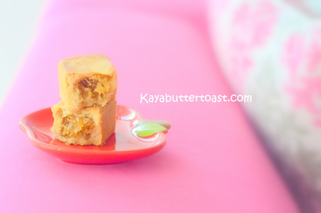 Happy Chinese New Year with Gartien CNY 2014 Design Pineapple Cakes (6)