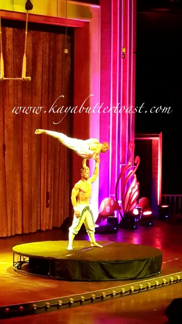Gala Premiere of LumiAir - A Cirque Sensation (13)