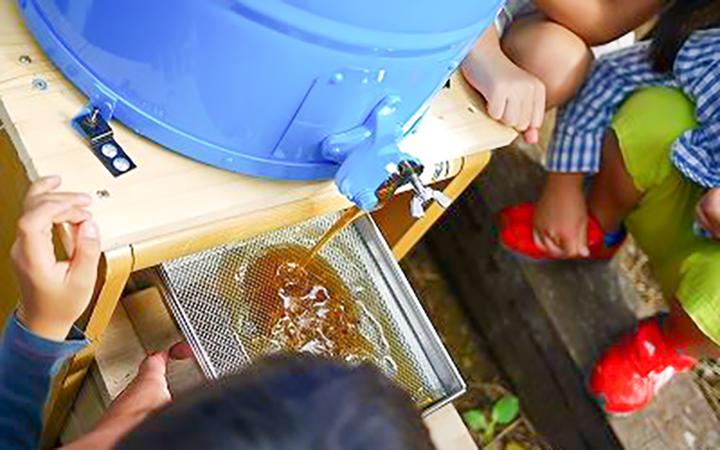 ミツバチプロジェクト 採蜜会