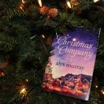 The Christmas Company by Alys Murray