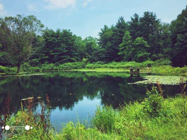 Boettler Park Nature Photography