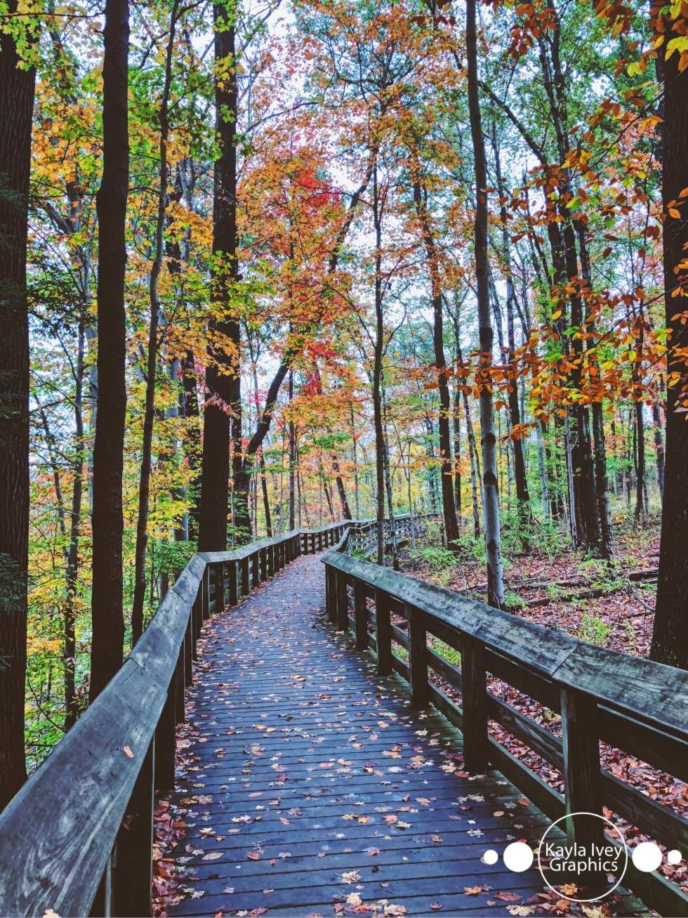 Brandywine Falls Slow Shutter Nature Photography