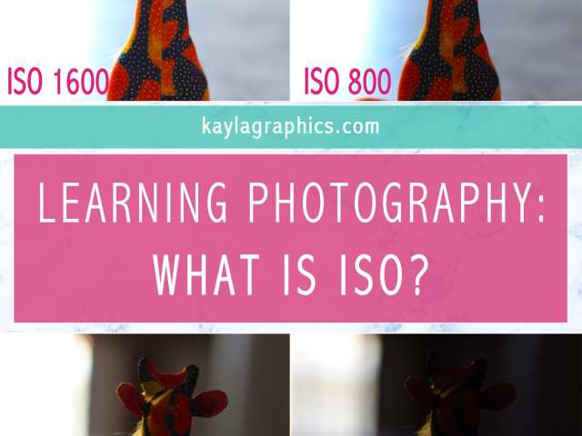 learning photography what is iso >> kaylagraphics.com