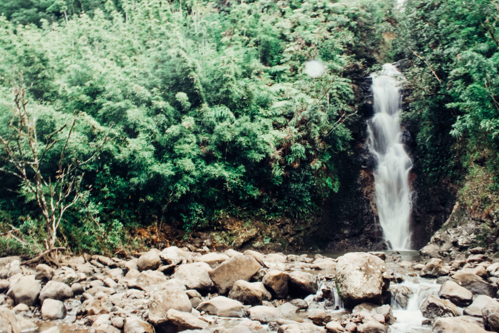 Waterfall Road to Hana