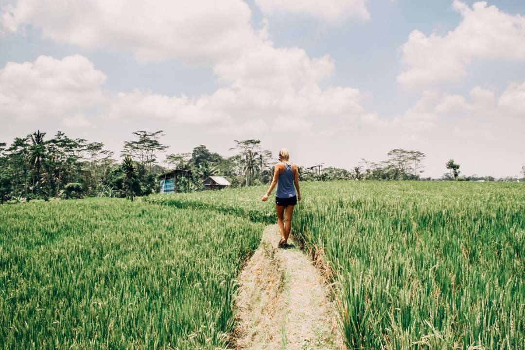 Woman in Rice Fields in Ubud Bali