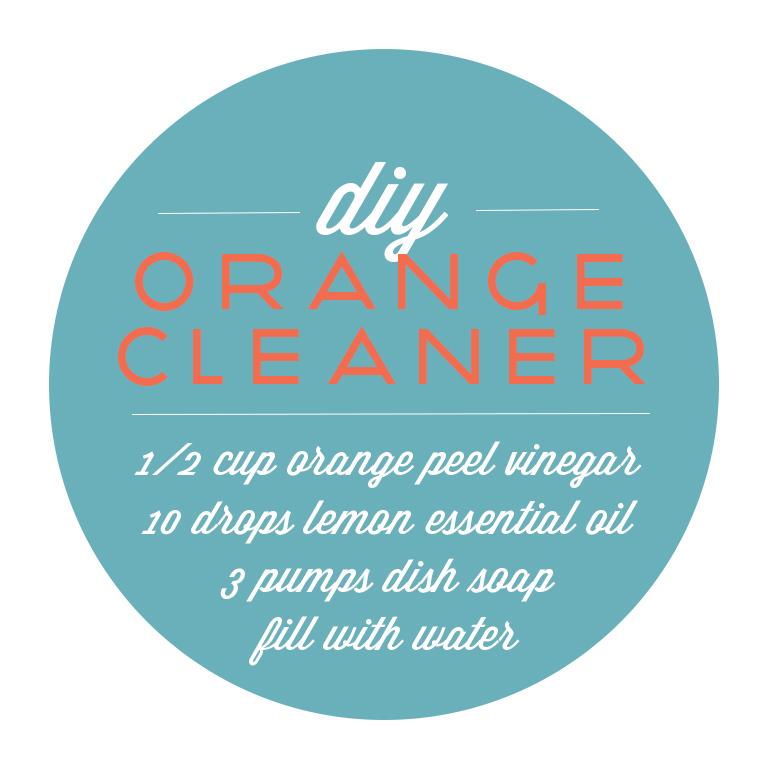 Kaylee Eylander DIY Cleaner